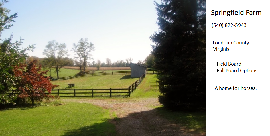 Horse Board Loudoun Va | Springfield Farm | Home for Horses